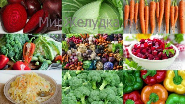 какие продукты полезны для желудка
