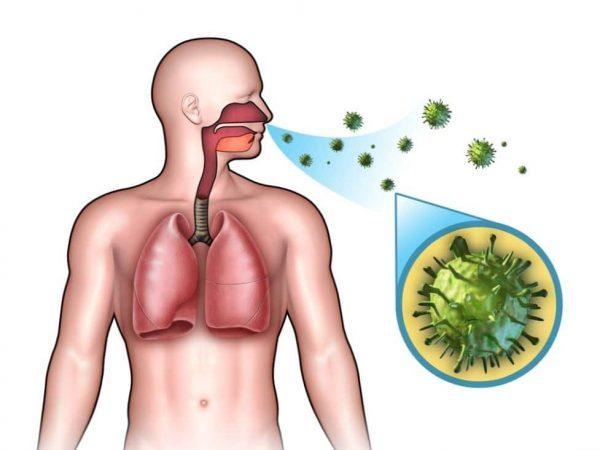 Факторы, благоприятствующие заражению коронавирусом